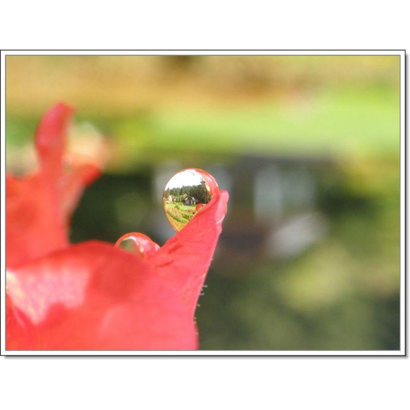 Macro Incl. Canon Powershot G15 10x High Definition 2 Element Close-Up Lens